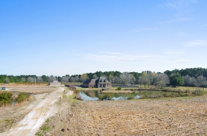 30 ACRE ESTATE / DEVELOPMENT